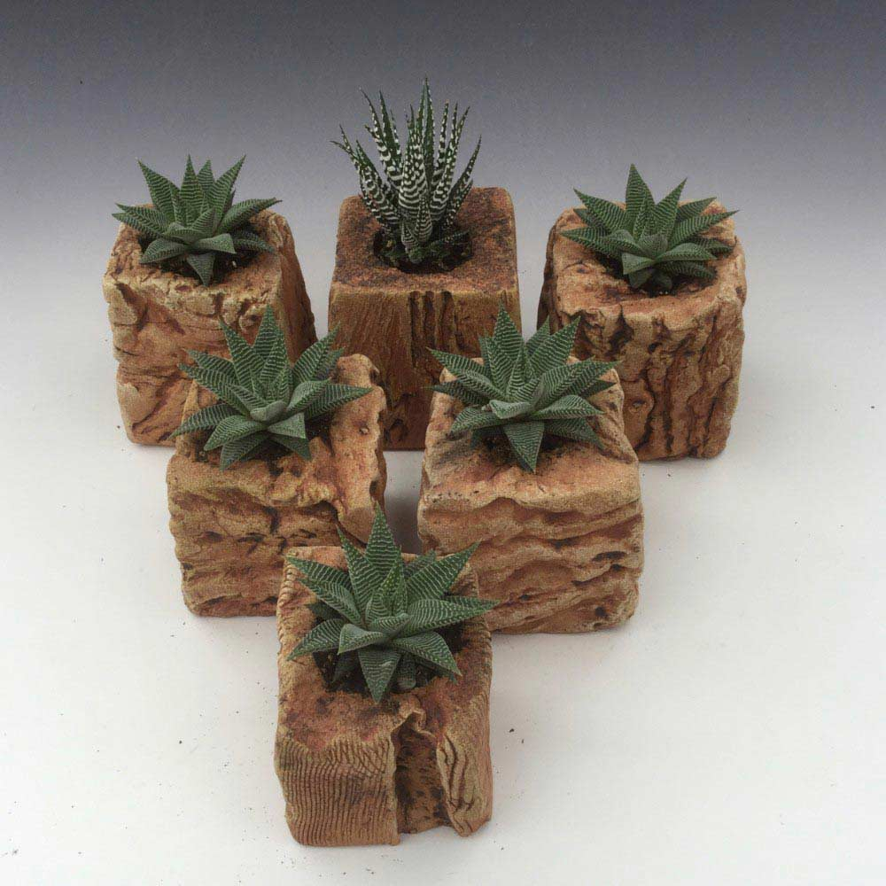06. Cube Planters 1